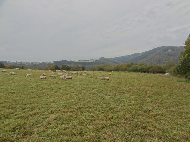 Landschapstuin – Marcourt